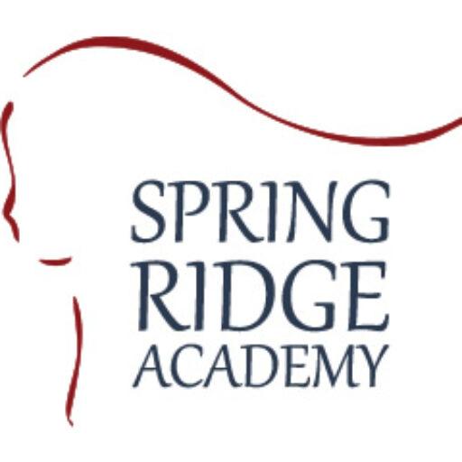 Spring Ridge Academy's Response to Negative Reviews