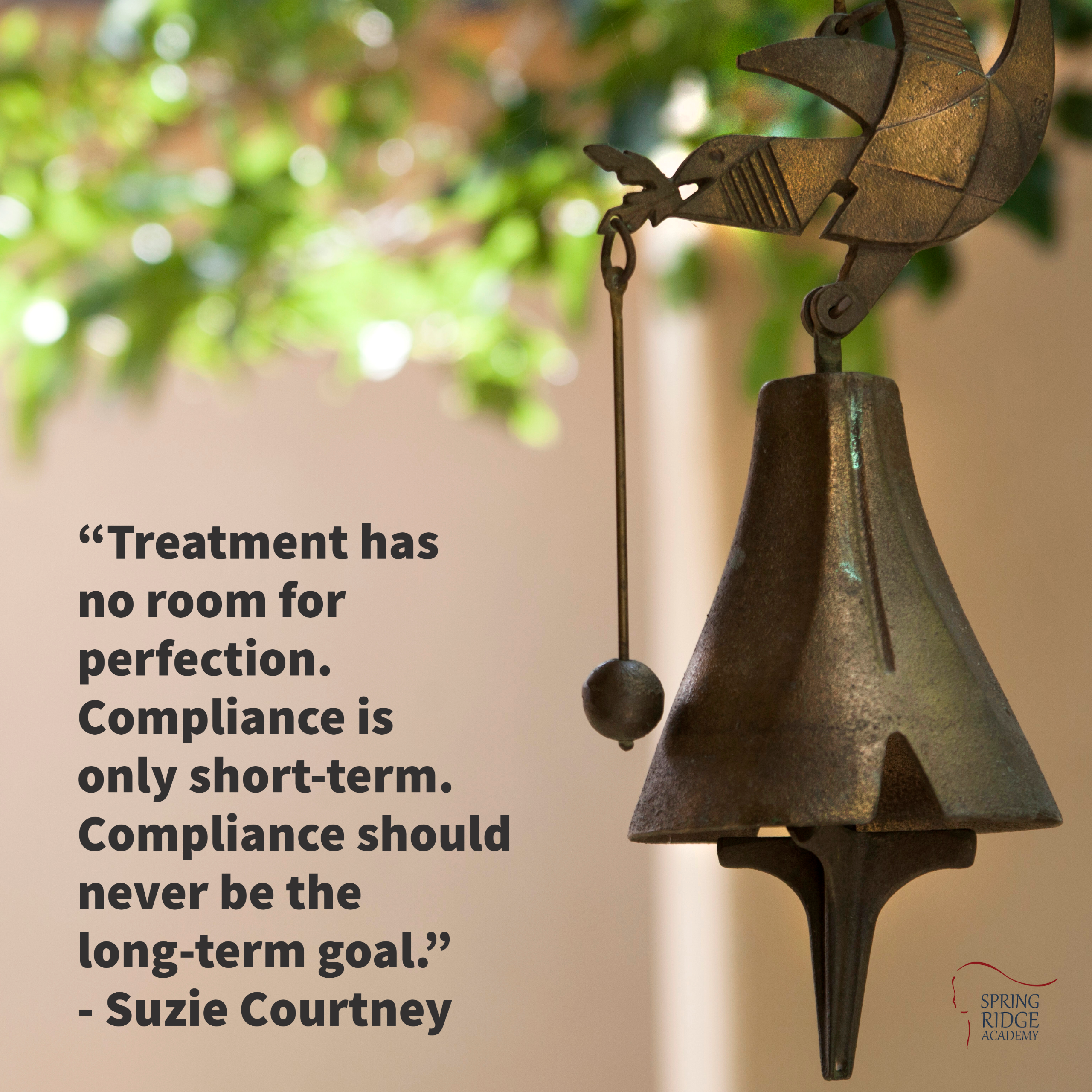 """""""Treatment has no room for perfection. Compliance is only short-term. Compliance should never be the long-term goal."""" - Suzie Courtney, Executive Director, Spring Ridge Academy"""