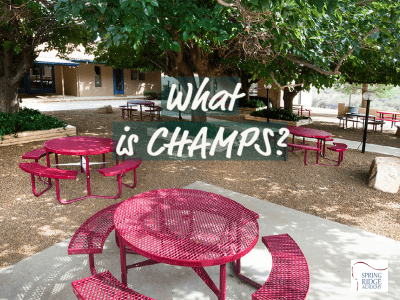 What is Champs?